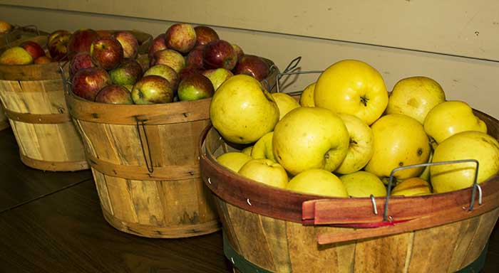 Apples pears fresh fruit Orcas Island